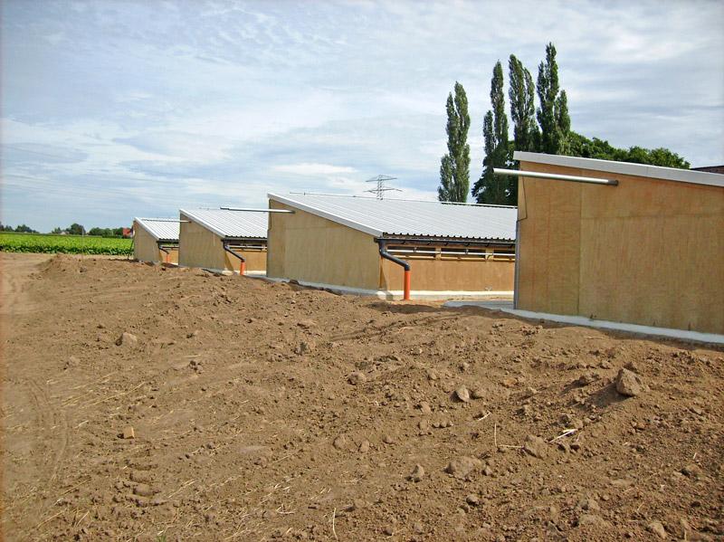 Neubau einer Schweinemastanlage